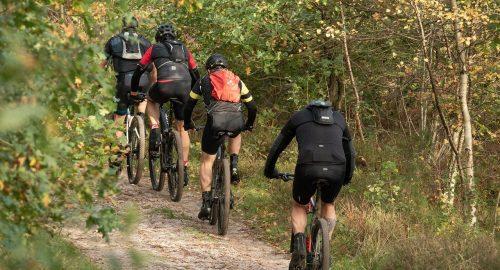 cyclists-5704420_1280